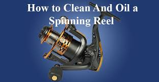 Spinning Reel Maintenance